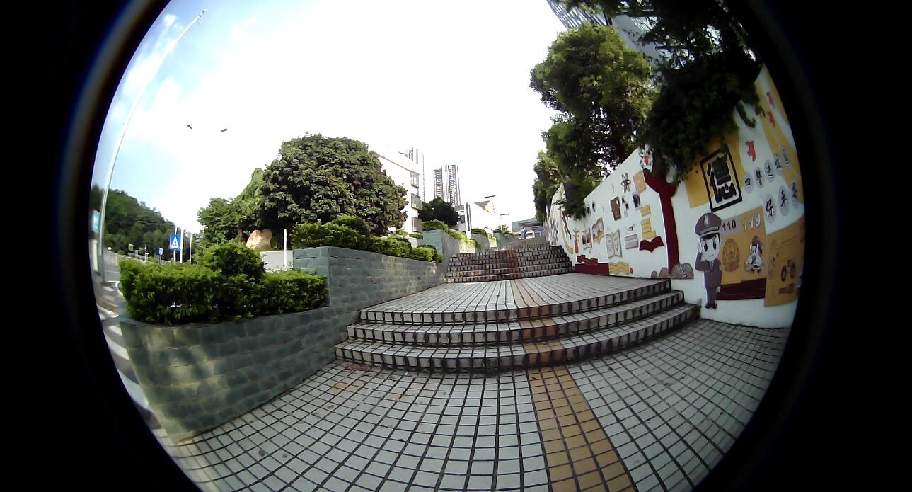 working fisheye lens